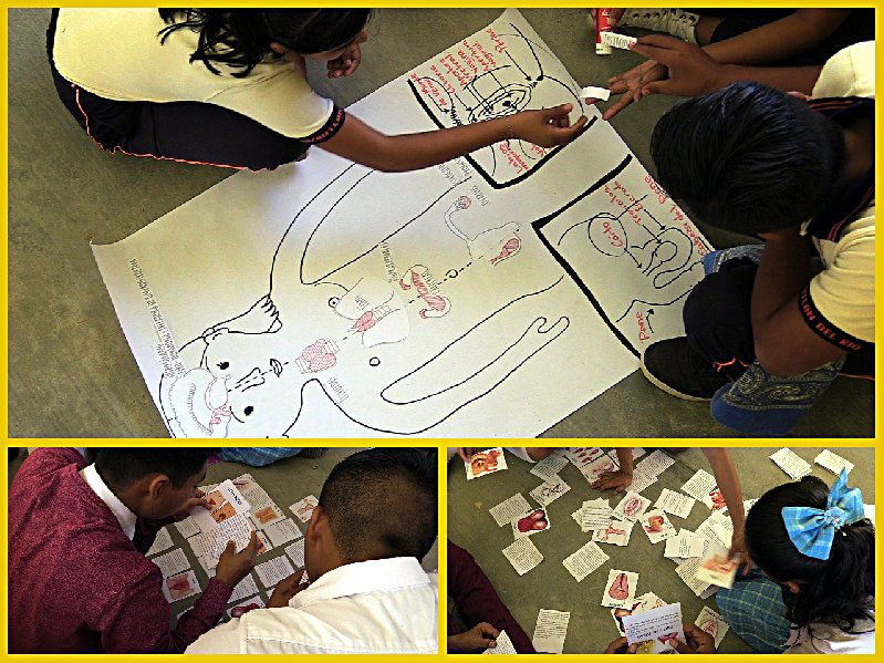 Educación sexual integral y salud materna