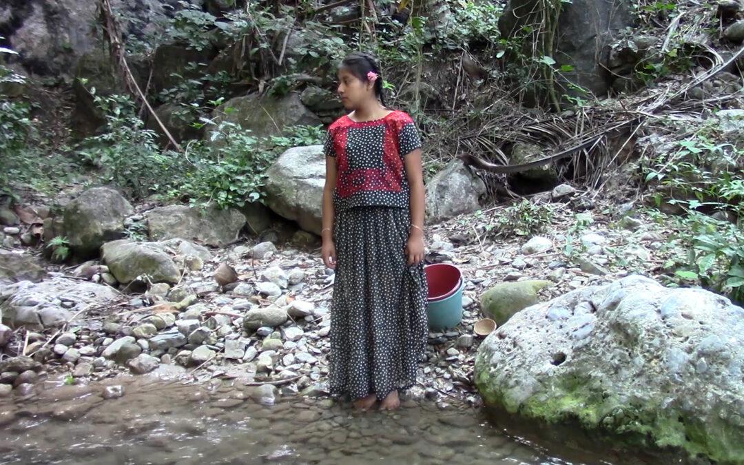 Presentan 4 cortometrajes realizados por jóvenes del Istmo